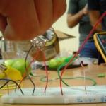 Prácticas de Código Abierto, Electrónica Experimental con Enfoques Colaborativos para Artistas, Mérida, Yucatán, 16 de junio al 4 de julio, 2008