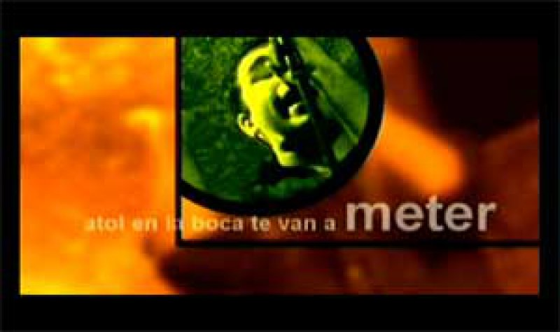 ELECCIONES, Jorge Mario Villatoro Shack. Bichito al mejor videoclip.