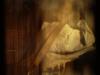 juan_bautista_cosecha-4.png